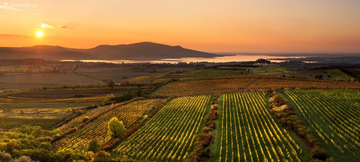 [Image: vinohrady-a-palava-z-pritlucke-hory-115861.jpg]