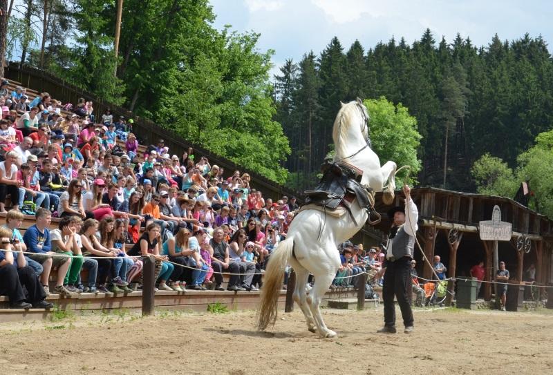 šikland - drezůra koní
